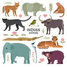 Indian Animals. Vector Illustr...