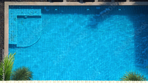 Obraz Top view or bird eye view images of swimming pool in summer season and sunny day which suitable for sport or relax on vacation time or chilling moment or workout for burn some calories in holiday. - fototapety do salonu