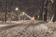 Snowy Path Sidewalk Street Sno...