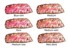 Degrees Of Steak Doneness. Scheme. Watercolor Hand Drawn Illustration, Isolated On White Background
