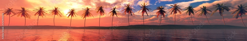 Fototapeta Palm trees over the water, a panorama of palm trees in a row at sunset by the sea,