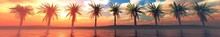 Palm Trees Over The Water, A P...
