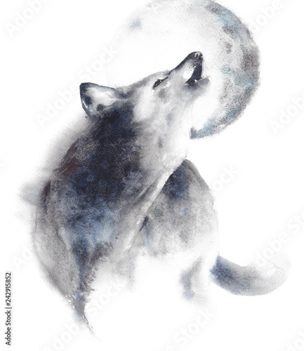 Fotografía  Wolf howling at moon wildlife animal watercolor painting illustration isolated o