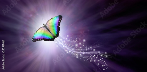 Multicoloured Butterfly taking flight into the Light - a large butterfly rising Canvas Print