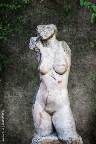 Deurstickers Historisch mon. textured picture of an antique torso bust