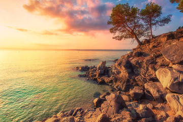Fototapeta Krajobraz Tropical sea landscape in Costa Brava, Spain