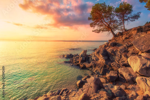 Canvas-taulu Tropical sea landscape in Costa Brava, Spain