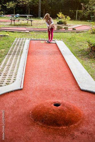 Fotografie, Obraz  vive le mini golf