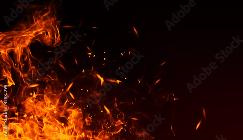 Obraz Realistic isolated fire effect  for decoration and covering on black background. Concept of particles , sparkles, flame and light. - fototapety do salonu