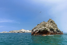Islet Covered With Guano And F...
