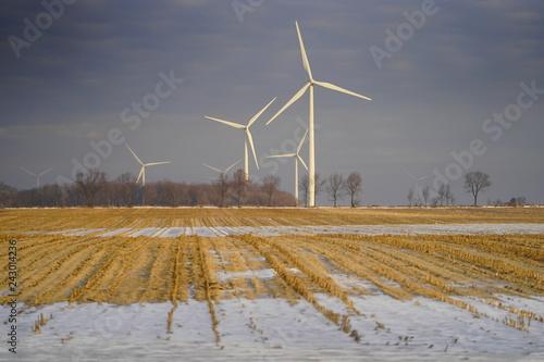 Fotografie, Obraz  Beauty of Wind Energy in Wisconsin