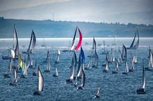 Barche A Vela Sul Mare Con For...