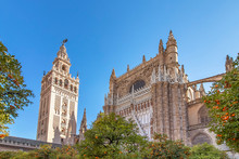 View Of Seville Cathedral Of S...