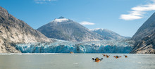 Tracy Arm Kayaking Tour In Fro...