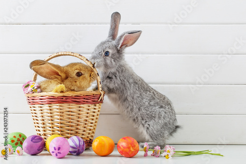 Photo Easter bunny with eggs on white background