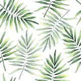 Bezszwowy wzór tropikalni kokosowi liście - 243079011