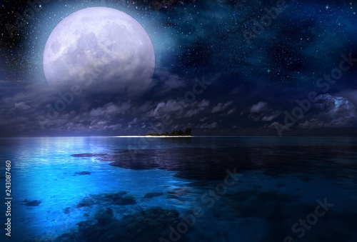 Wall Murals Full moon over the sea and starry sky