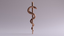 Bronze Medical Serpent Symbol Rod Of Asclepius  3d Illustrations