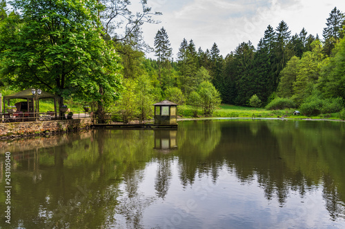 Fotomural Pond  in Teutoburg Forest nearby Silbermuele, Germany