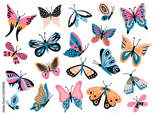 Stampa su Tela Hand drawn butterfly
