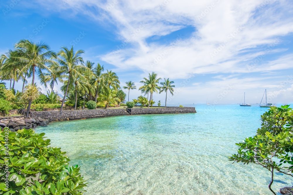 Fototapeta Tropical landscape of Tahiti with palm trees and turquoise blue sea at beautiful resort.