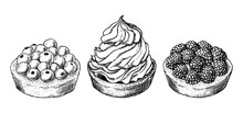Set Of Delicious Hand Drawn Creamy Biscuit And Tarts With Berries. Engraving Style Pen Pencil Painting Retro Vintage Vector Lineart Illustration. Collection Of Sweet Desserts.