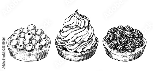 Photo Set of delicious hand drawn creamy biscuit and tarts with berries