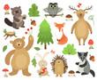 Cute woodland animals. Beaver fox deer owl bear hare hedgehog badger. Cartoon forest animal vector collection