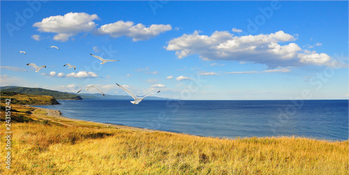 Landscape with seagulls/ Landscape with seagulls of the North-East coast of the sea of Japan - On the horizon is visible Cape Sosunova