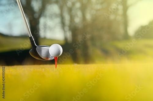 Deurstickers Golf Let's golf today