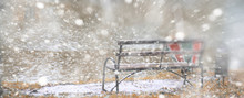 Winter Park Lonely Bench Under Snow
