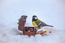 Wintering Bird Sitting At The Feeder, Tit In The Snow, Feeding Birds, Blue Head, Yellow Breast