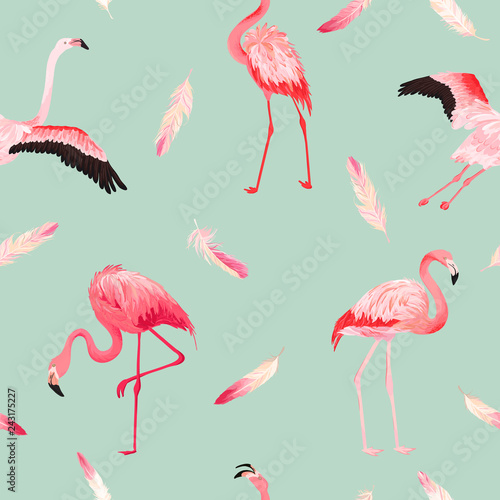 Ingelijste posters Flamingo Tropical Flamingo seamless vector summer pattern with pink feathers. Exotic Pink Bird background for wallpapers, web page, texture, textile. Animal Wildlife Design