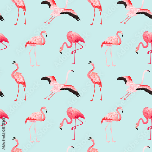 Fotobehang Flamingo vogel Tropical Flamingo seamless vector summer pattern. Exotic Pink Bird background for wallpapers, web page, texture, textile. Nature Wildlife Fauna Design