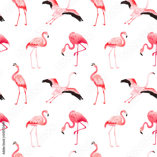 Photo Stands Flamingo Tropical Flamingo seamless vector summer pattern. Exotic Pink Bird background for wallpapers, web page, texture, textile. Nature Wildlife Fauna Design