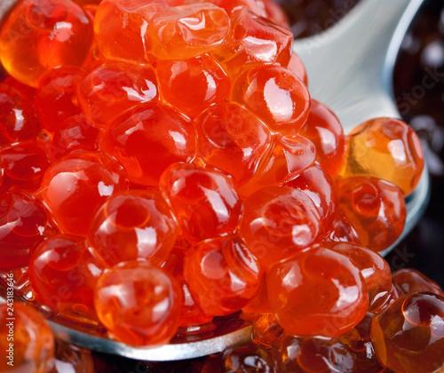 fish eggs caviar spoon concept