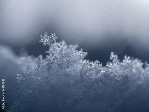 Fototapeta Snowflake closeup photo. Snow macro. Snowflake on macro photo. obraz na płótnie