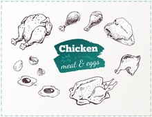 Hand Drawn Food Poster. Chicken Parts And Eggs