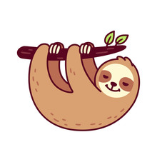 Cute Hanging Sloth
