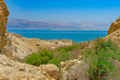 The Dead Sea Viewed from an Oasis