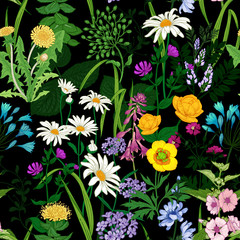 FototapetaSeamless background with wild flowers. Floral pattern on black background.