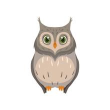 Cute Owl, Lovely Bird Cartoon ...