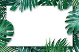 Summer tropical leaves with blank paper on white background