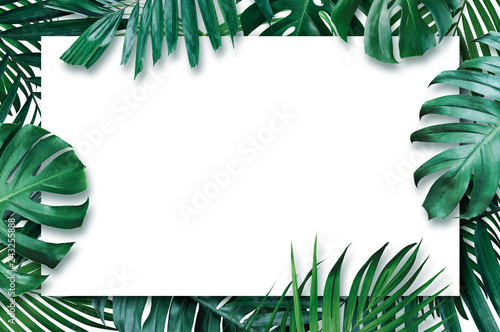 Foto  Summer tropical leaves with blank paper on white background