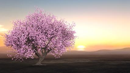 Panel Szklany Kwiaty 桜景色