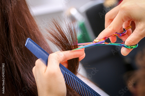 Fotografie, Obraz  Close-up of a hairdresser cutting the hair of a woman in a beauty salon