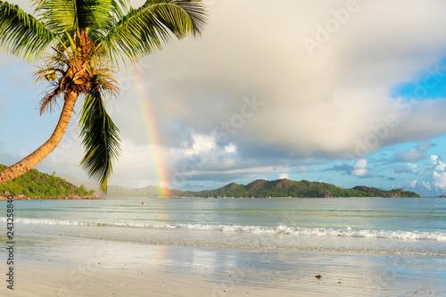 Naklejka premium Coco palma i tęcza na egzotycznej tropikalnej plaży rano na Seszelach.