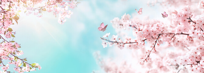 Panel SzklanySpring banner, branches of blossoming cherry against background of blue sky and butterflies on nature outdoors. Pink sakura flowers, dreamy romantic image spring, landscape panorama, copy space.