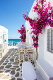 Fototapeta Uliczki - Typisch weiße Gasse mit Oleander Blumen auf einer Kykladen Insel in Griechenland im Sommer