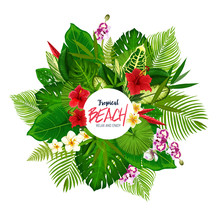 Summer Tropical Palm Leaves And Flower Poster